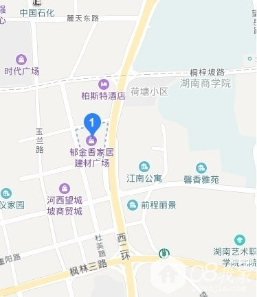 郁金香地图.jpg
